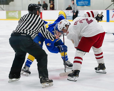 Lakeville South vs Hastings Section Final-1