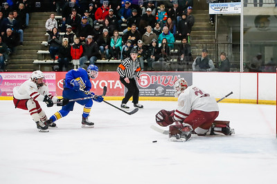 Lakeville South vs Hastings Section Final-13