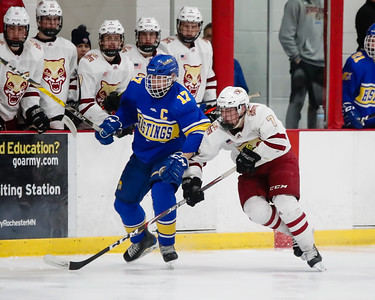 Lakeville South vs Hastings Section Final-26