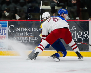 Lakeville South vs Hastings Section Final-18