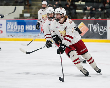 Lakeville South vs Hastings Section Final-19