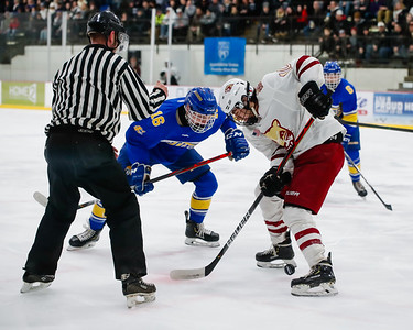 Lakeville South vs Hastings Section Final-12