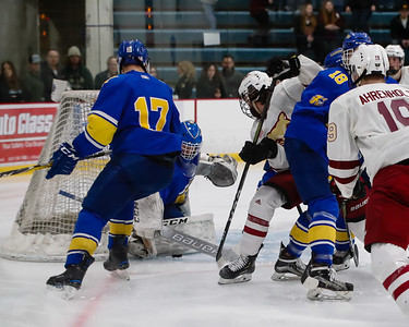 Lakeville South vs Hastings Section Final-23