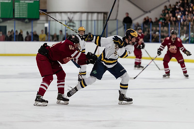 Lakeville South vs Rosemount Away-124