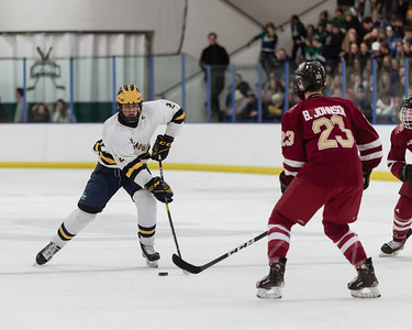 Lakeville South vs Rosemount Away-1