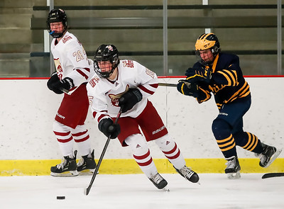 Lakeville South vs Rosemount JV-17