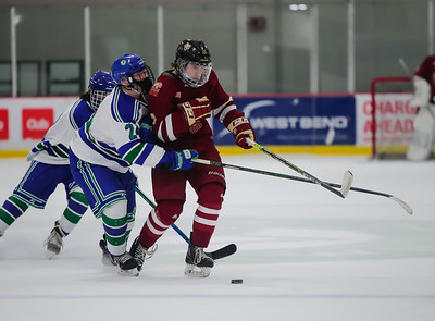 Lakeville South vs Eagan JV-15