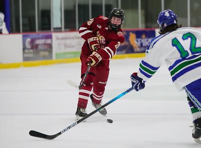 Lakeville South vs Eagan JV-28