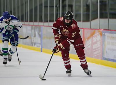 Lakeville South vs Eagan JV-19