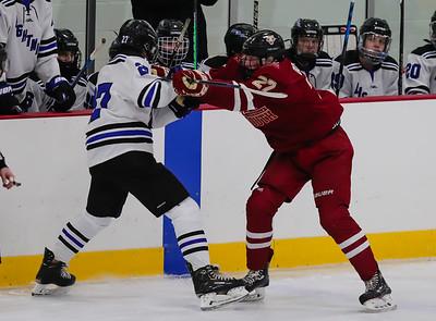 Lakeville South vs Eastview JV-11
