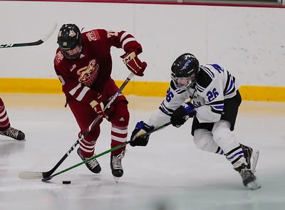 Lakeville South vs Eastview JV-3