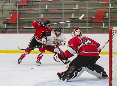 Lakeville South vs Lakeville North JV-19