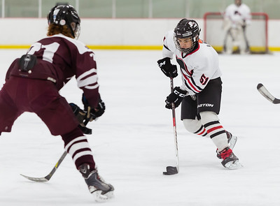Lakeville N vs S St Paul Bantam B2-27