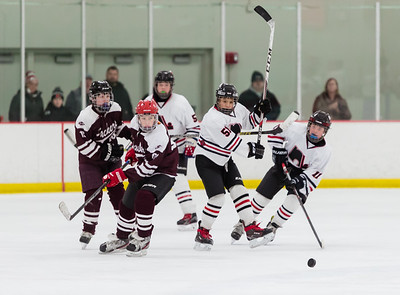 Lakeville N vs S St Paul Bantam B2-28