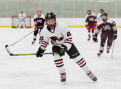 Lakeville N vs S St Paul Bantam B2-10