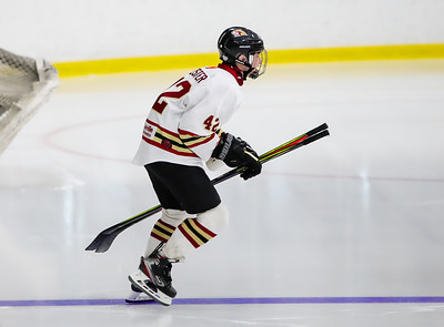 Lakeville South vs Inver Grove Heights-4