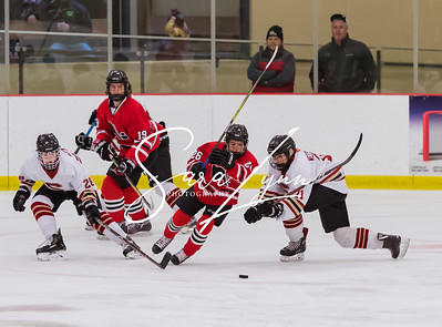 Lakeville South vs Lakeville North Bantam AA -2