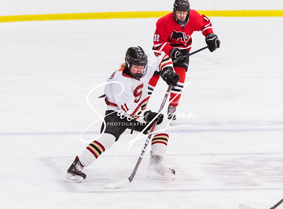 Lakeville South vs Lakeville North Bantam AA -9