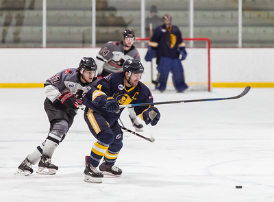 Minnesota Magicians vs Springfield Jr Blues 2-12