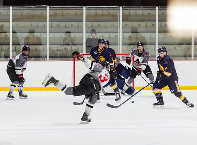 Minnesota Magicians vs Springfield Jr Blues 2-29