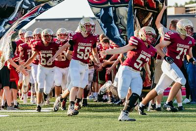 Lakeville S vs Eagan Varsity-14