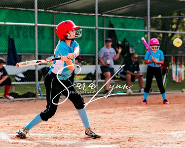 Lakeville 10U vs State Qualifier Day 2-6