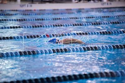 20161129 GMHS Swim TAC