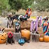 Halloween2014-2-34