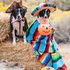 Halloween2014-2-44