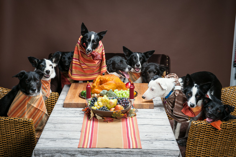 ThanksgivingWestern-8295
