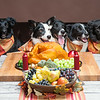ThanksgivingWestern-8276