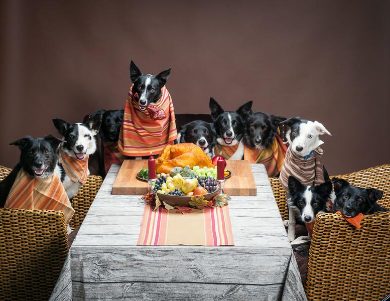 ThanksgivingWestern-8298