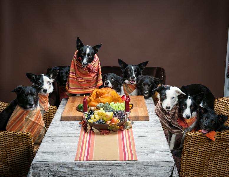 ThanksgivingWestern-8293