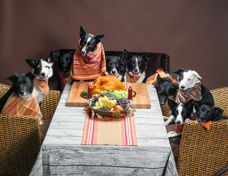 ThanksgivingWestern-8312