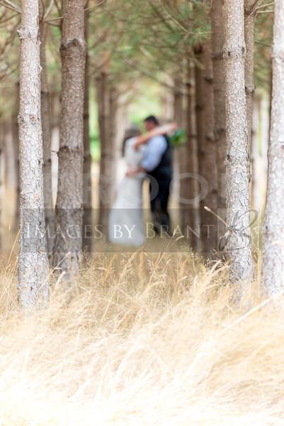 Yelm_wedding_photographer_R&S_0363DS3_6031