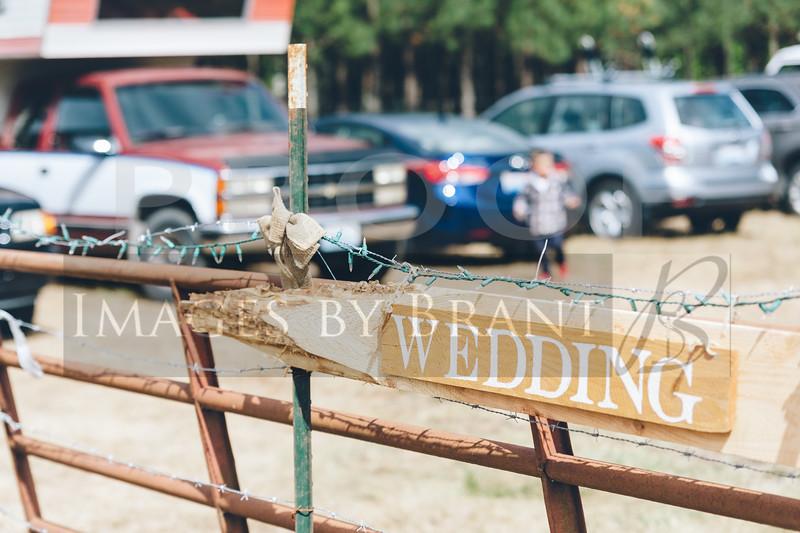 Yelm_wedding_photographer_R&S_0596D2C_2572-3
