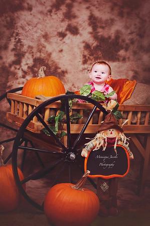 Studio Pumpkin Patch