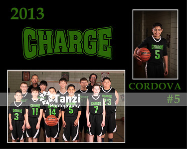 FP_Charge_Comp_05