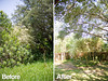 TX Tree Tamers Before & After 05