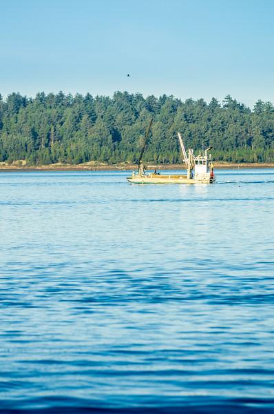 Miami Cove near Garibaldi, Oregon.
