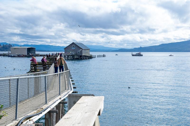 Pier's End at the Garibaldi Pier in Garibaldi, Oregon.