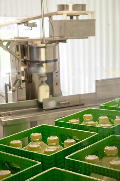 Bottling Milk at Bennett Family Farm in Tillamook, Oregon