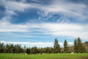 Bennett Family Farm in Tillamook, Oregon