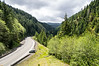 Wilson River Highway, just east of Tillamook, Oregon