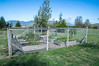 The community garden in Wheeler, Oregon