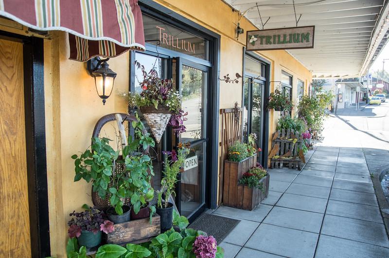 Entrance to Trillium, downtown Wheeler, Oregon
