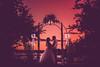 Tony & Cassandra's Wedding-1188