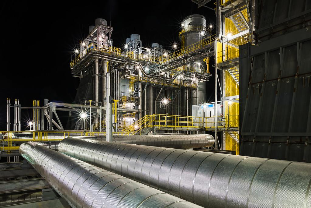 ws-lee-cc-plant-1719