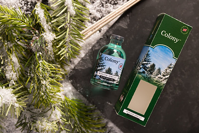 Winter Spruce-6