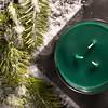 Winter Spruce-11